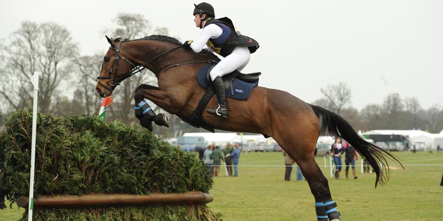 конный спорт фаворит подольск